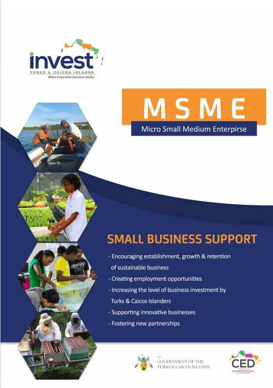 Micro Small and Medium Enterprise (MSME) Programme brochure